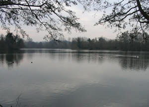Batchworth Lake