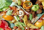 food-waste-list-image.jpg