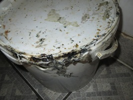 Mouldy tub photographed at Paya Cuisine & Yummy Pizza